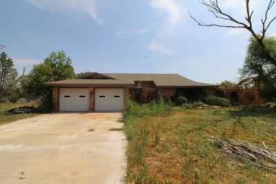 Odessa Single Family Home For Sale: 9031 W Valley Meadow Lane