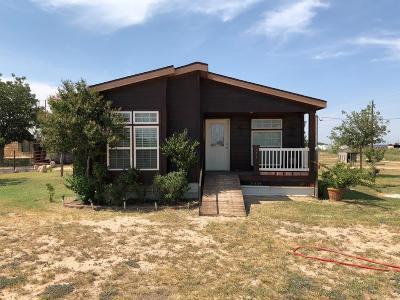 Odessa Single Family Home For Sale: 171 E Schirra Dr