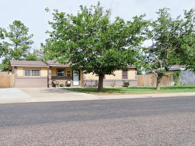 Odessa Single Family Home For Sale: 4604 McKnight Dr