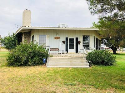 Odessa Single Family Home For Sale: 16205 S Jasper