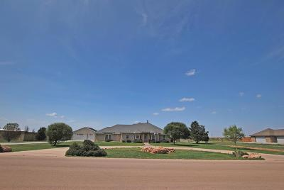 Midland Single Family Home For Sale: 9914 W County Rd 75