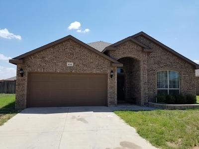 Odessa TX Single Family Home For Sale: $243,900