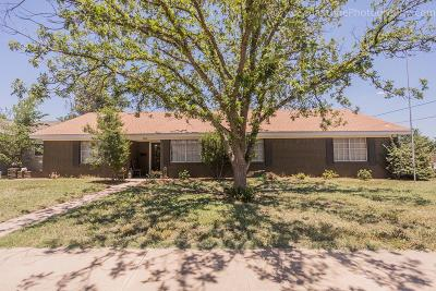Midland Single Family Home For Sale: 3600 Stanolind Ave