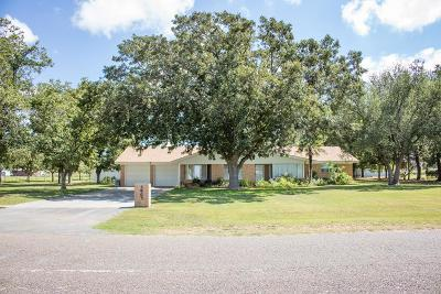 Midland Single Family Home For Sale: 3903 S County Rd 1185
