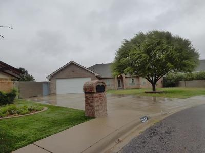 Odessa Single Family Home For Sale: 4608 Lemonwood Lane