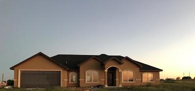 Odessa Single Family Home For Sale: 10529 Yukon Rd