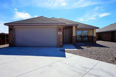 Midland Rental For Rent: 6701 Yellow Rose Ct
