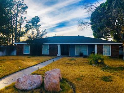 Odessa Single Family Home For Sale: 3115 Trails End Rd