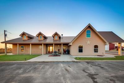 Odessa Single Family Home For Sale: 4325 Sierra Ave