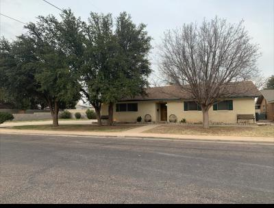 Odessa Single Family Home For Sale: 1616 Haywood Ave