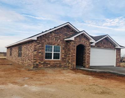 Midland Single Family Home For Sale: 6705 S County Rd 1210