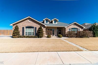 Odessa Single Family Home For Sale: 3124 San Pedro Dr