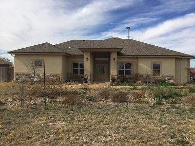 Odessa Single Family Home For Sale: 51 Castillo Circle