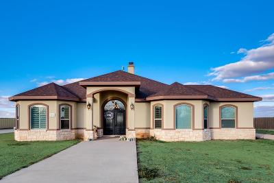 Odessa Single Family Home For Sale: 9976 W Palm