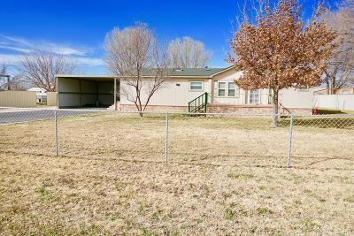 Odessa Single Family Home For Sale: 8750 W Saturn