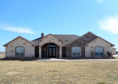 Odessa Single Family Home For Sale: 1740 Angel Trail