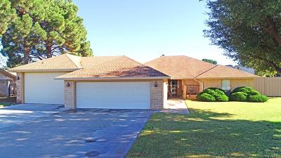 Odessa Single Family Home For Sale: 3615 S County Rd 1317
