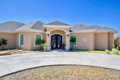 Odessa Single Family Home For Sale: 3305 Marksburg Ave