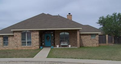Odessa Single Family Home For Sale: 7 Toro Court