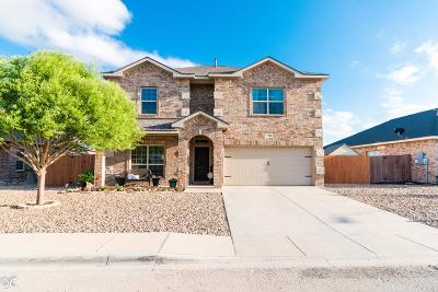 Odessa Single Family Home For Sale: 3905 Roma