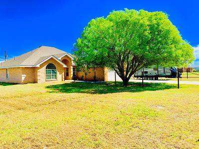 Odessa Single Family Home For Sale: 9060 W 59th St