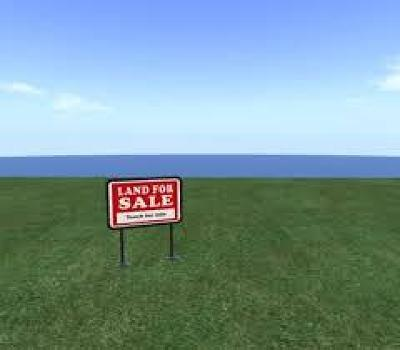 Odessa Residential Lots & Land For Sale: 701 E Pearl