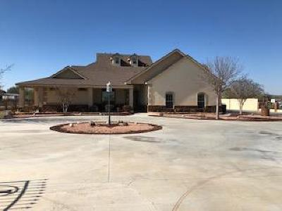 Midland Single Family Home For Sale: 901 E County Rd 125