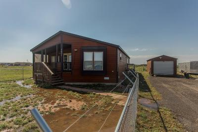 Midland Single Family Home For Sale: 7601 E County Rd 62