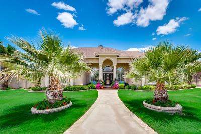 Odessa Single Family Home For Sale: 10 La Promesa Circle
