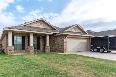 Odessa Single Family Home For Sale: 314 E 96th St