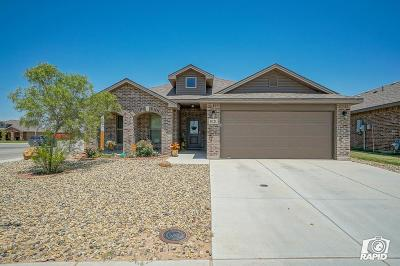 Odessa Single Family Home For Sale: 1021 Pine Leaf Pl