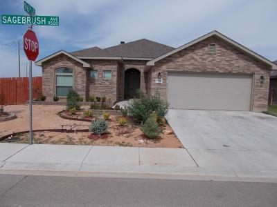 Odessa Single Family Home For Sale: 9506 Sagebrush Ave