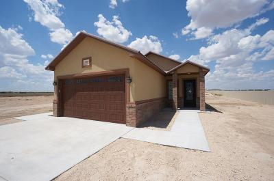 Odessa Single Family Home For Sale: 7060 W Nectarine
