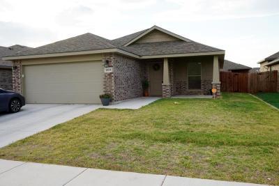 Odessa Single Family Home For Sale: 1019 E 95th St
