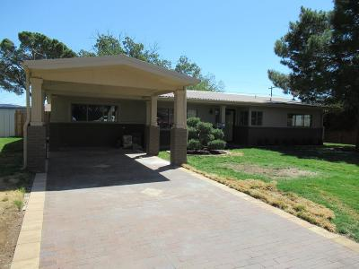 Odessa Single Family Home For Sale: 2904 Chisum Ave