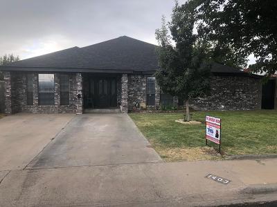 Odessa Single Family Home For Sale: 1403 E 38th St