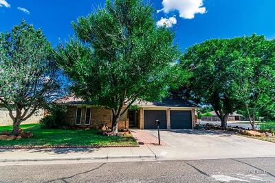 Odessa Single Family Home For Sale: 6400 Dunbar Dr