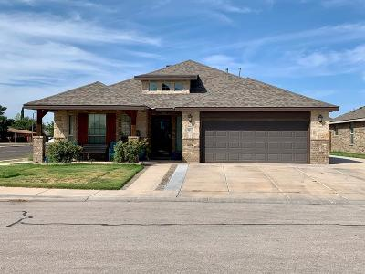 Odessa Single Family Home For Sale: 9101 Holiday Dr