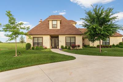 Pampa TX Single Family Home For Sale: $475,000