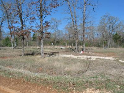 Anderson County Residential Lots & Land For Sale: 549 Private Road 6233