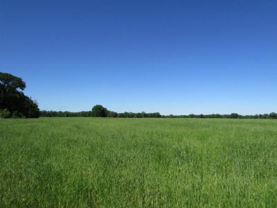 Anderson County Residential Lots & Land For Sale: 00 Us Hwy 287