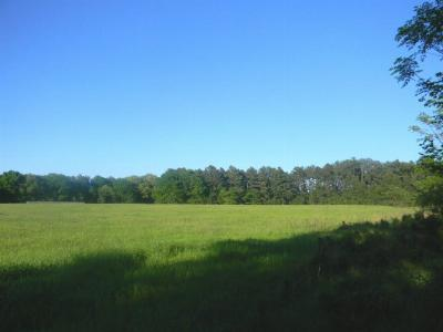 Henderson County Residential Lots & Land For Sale: 501 Cades Cove Road