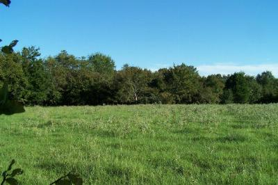 Henderson County Residential Lots & Land For Sale: 00 S Hwy 19