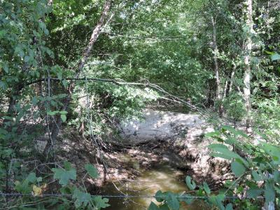 Anderson County Residential Lots & Land For Sale: 2289 W Fm 861