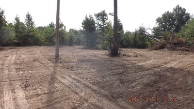 Palestine TX Residential Lots & Land For Sale: $59,900