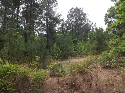 Anderson County Residential Lots & Land For Sale: State Hwy 155