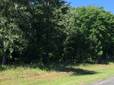 Henderson County Residential Lots & Land For Sale: Water's Edge Drive