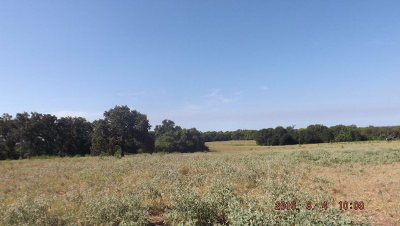 Oakwood TX Residential Lots & Land For Sale: $332,850