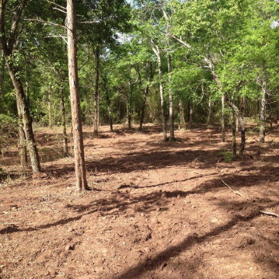 Henderson County Residential Lots & Land For Sale: 424 Gibson Road