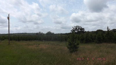 Palestine TX Residential Lots & Land For Sale: $249,900